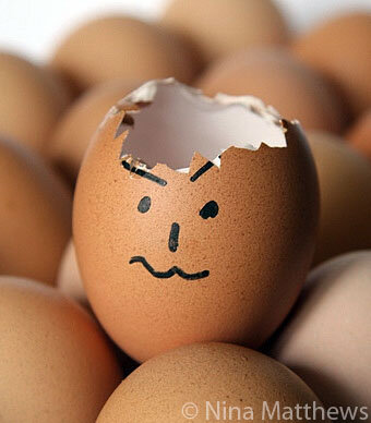 WordPress Security is like an egg shell
