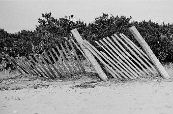 Skewed fence on beach